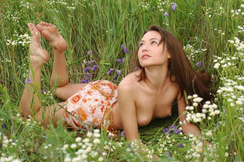 young brunette girl on the field of wild flowers