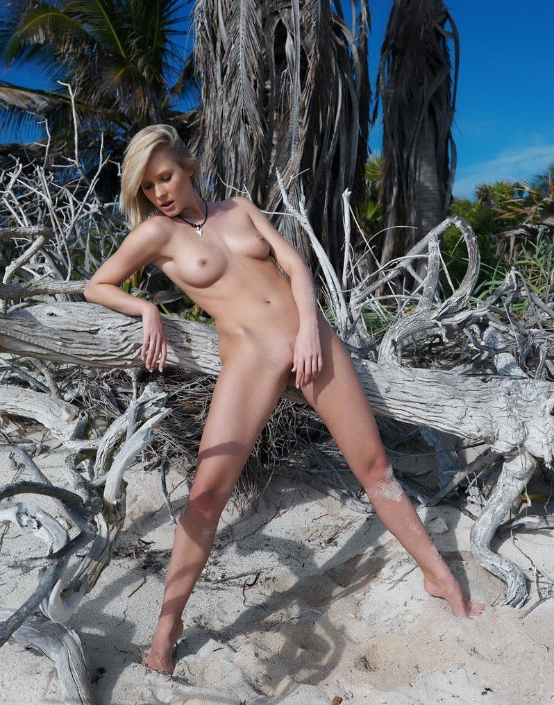 young blonde girl reveals on the sandy beach with a driftwood and remains of trees
