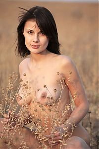 Babes: black haired girl strips her jeans on a field pathway