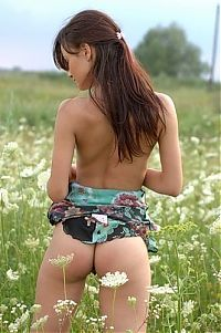 Babes: young brunette girl in a meadow