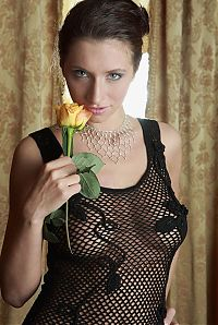 Babes: young brunette girl with a yellow rose strips a black transparent dress behind the curtains