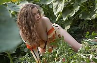 Babes: young curly brunette girl in the field of sunflowers
