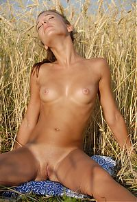 Babes: cute young brunette girl reveals in the field of rye
