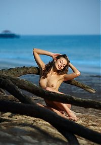 Nake.Me search results: cute young curly brunette girl posing on tree roots on the beach in the evening