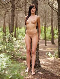 Nake.Me search results: red haired girl shows off naked in the forest