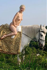 Nake.Me search results: young blonde girl with a white top riding on the white horse in the nature