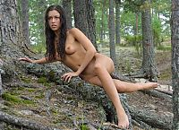 Nake.Me search results: young brunette girl posing on tree roots at the bank of the sea on the rocky coast