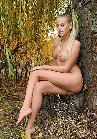 Nake.Me search results: young blonde girl shows off her body in the nature near trees in the autumn forest