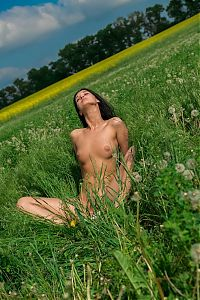 Nake.Me search results: young black haired girl undresses her bodysuit on the field of dandelions
