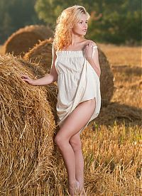 Nake.Me search results: curly blonde girl reveals her white underskirt on the field with a hay grass