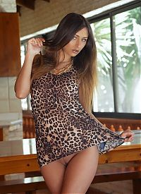 Nake.Me search results: young brunette girl reveals her leopard print dress on the table in the kitchen